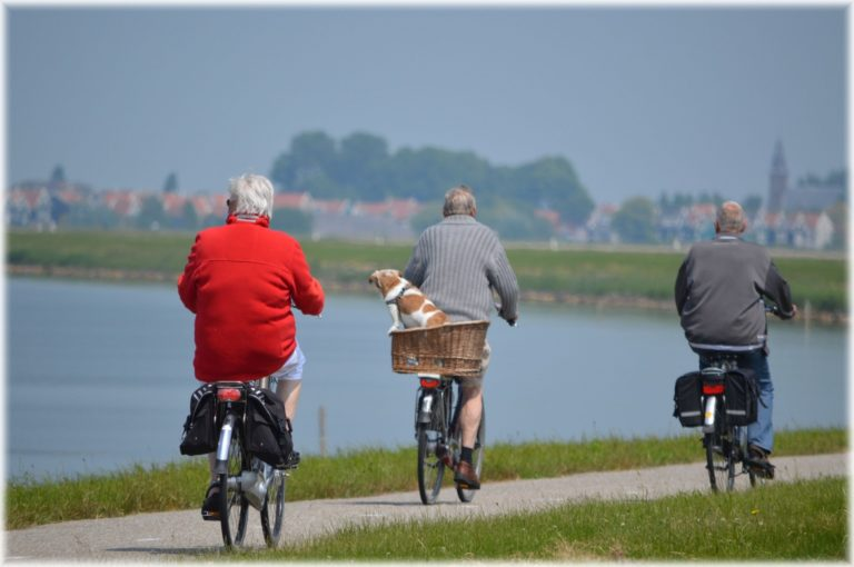 les jeunes retraités sont en attente de produits permettant de maintenir leur dynamisme physique